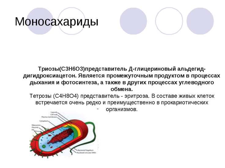 Моносахариды Триозы(С3Н6О3)представитель Д-глицериновый альдегид- дигидроксиа...