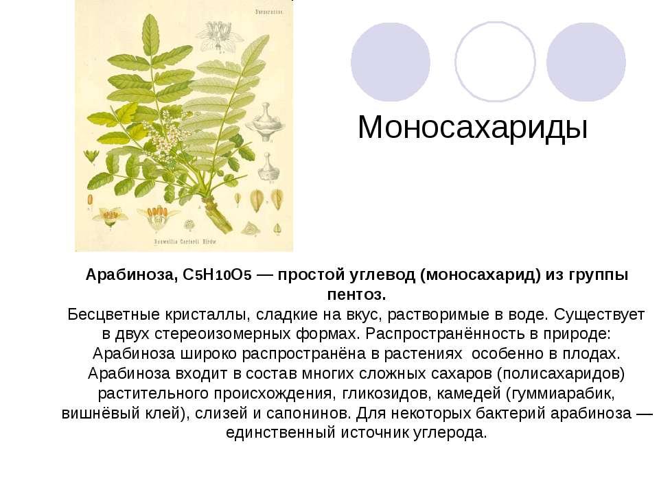 Арабиноза, C5H10O5 — простой углевод (моносахарид) из группы пентоз. Бесцветн...