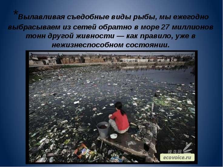 *Вылавливая съедобные виды рыбы, мы ежегодно выбрасываем из сетей обратно в м...