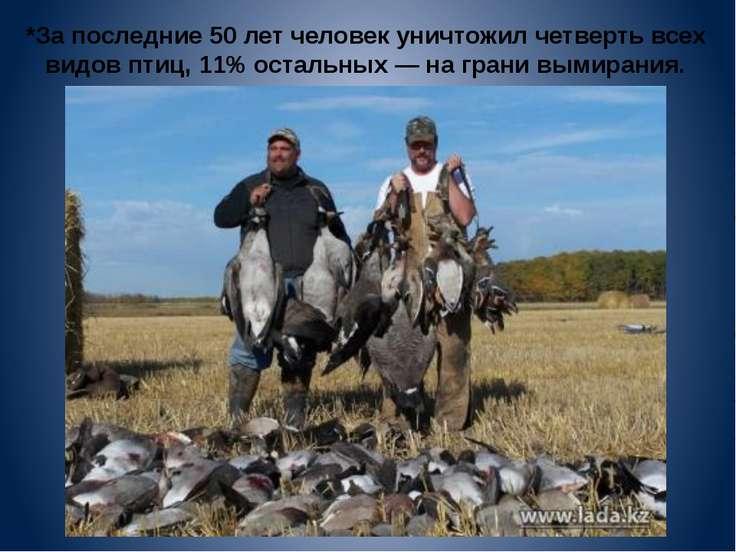 *За последние 50 лет человек уничтожил четверть всех видов птиц, 11% остальны...