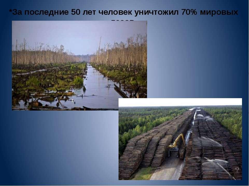 *За последние 50 лет человек уничтожил 70% мировых лесов.