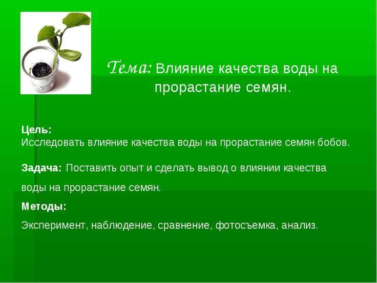 Тема: Влияние качества воды на прорастание семян. Цель: Исследовать влияние к...