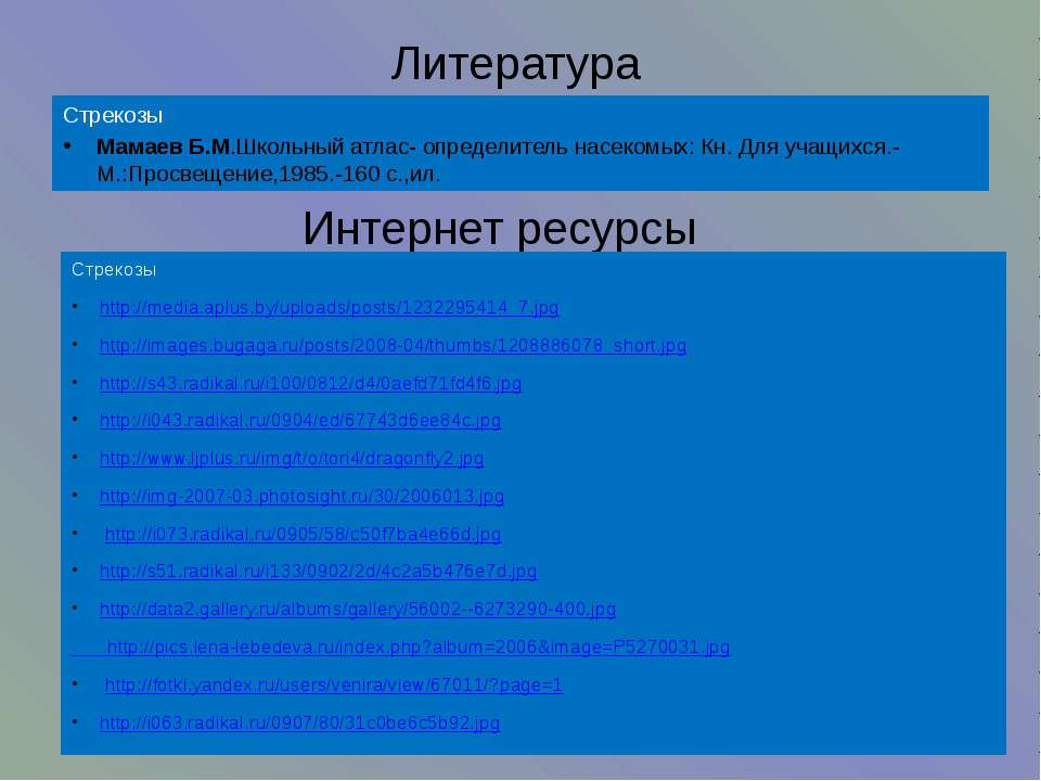 Интернет ресурсы Стрекозы http://media.aplus.by/uploads/posts/1232295414_7.jp...