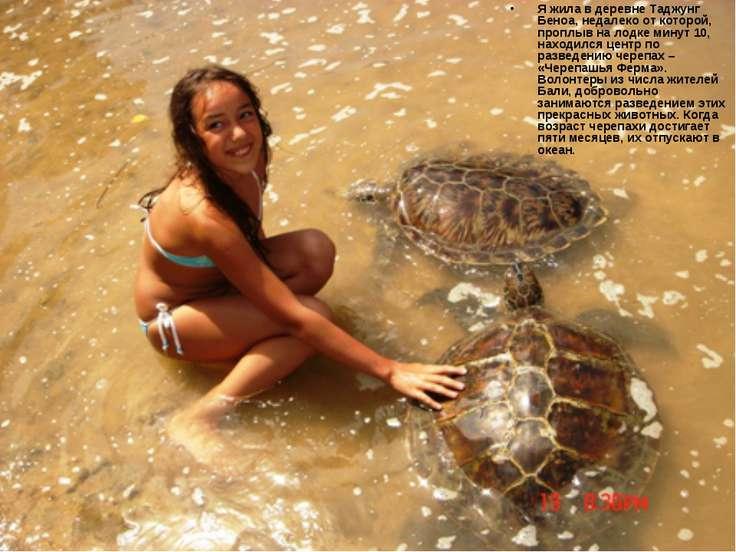 Я жила в деревне Таджунг Беноа, недалеко от которой, проплыв на лодке минут 1...