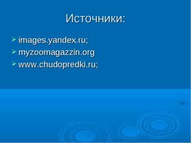 Источники: images.yandex.ru; myzoomagazzin.org www.chudopredki.ru;