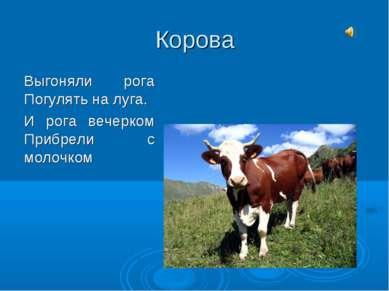 Корова Выгоняли рога Погулять на луга. И рога вечерком Прибрели с молочком