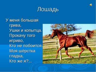 Лошадь У меня большая грива, Ушки и копытца. Прокачу того игриво, Кто не побо...