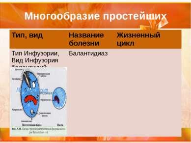 Многообразие простейших Тип, вид Название болезни Жизненный цикл Тип Инфузори...
