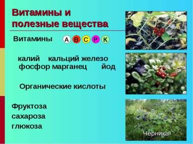 Витамины и полезные вещества Витамины калий кальций железо фосфор марганец йо...
