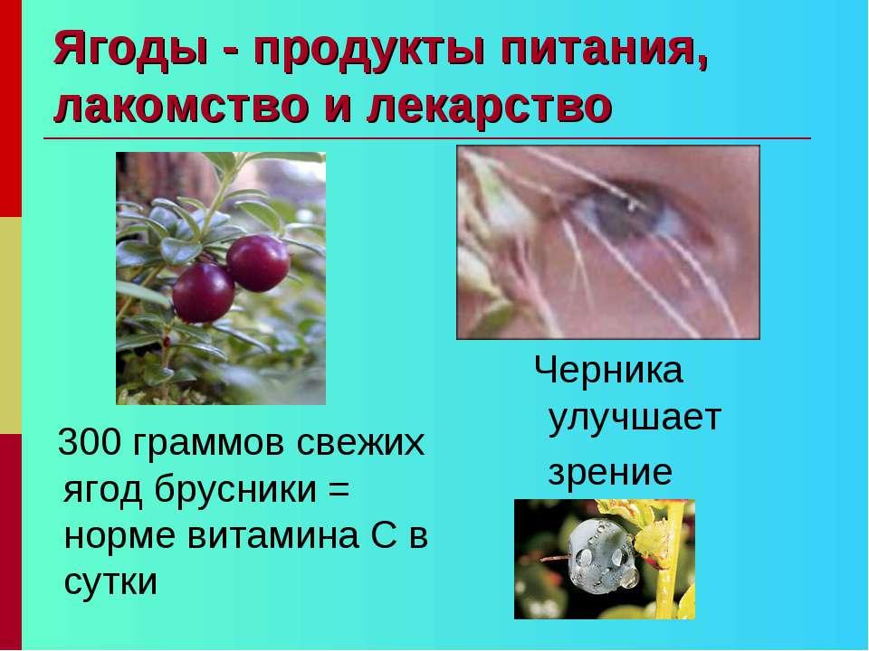 Ягоды - продукты питания, лакомство и лекарство 300 граммов свежих ягод брусн...