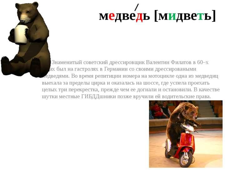 медведь [мидветь] Знаменитый советский дрессировщик Валентин Филатов в 60–х г...