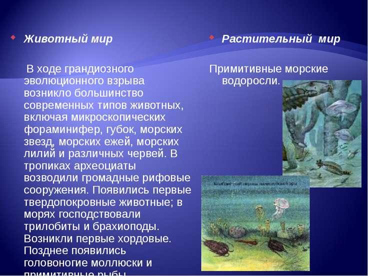 Животный мир В ходе грандиозного эволюционного взрыва возникло большинство со...