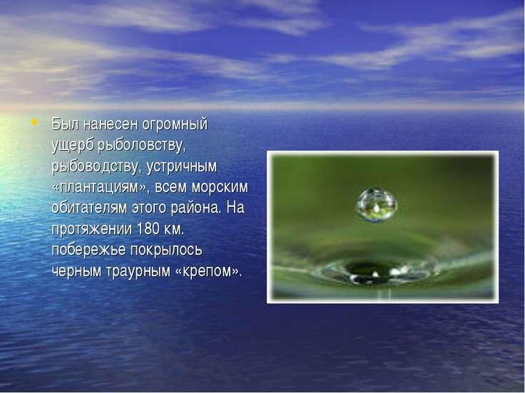 Был нанесен огромный ущерб рыболовству, рыбоводству, устричным «плантациям», ...