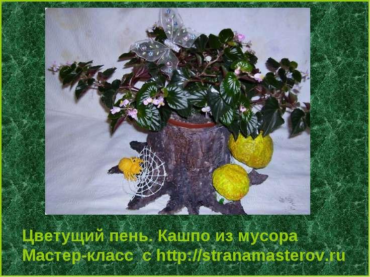 Цветущий пень. Кашпо из мусора Мастер-класс с http://stranamasterov.ru