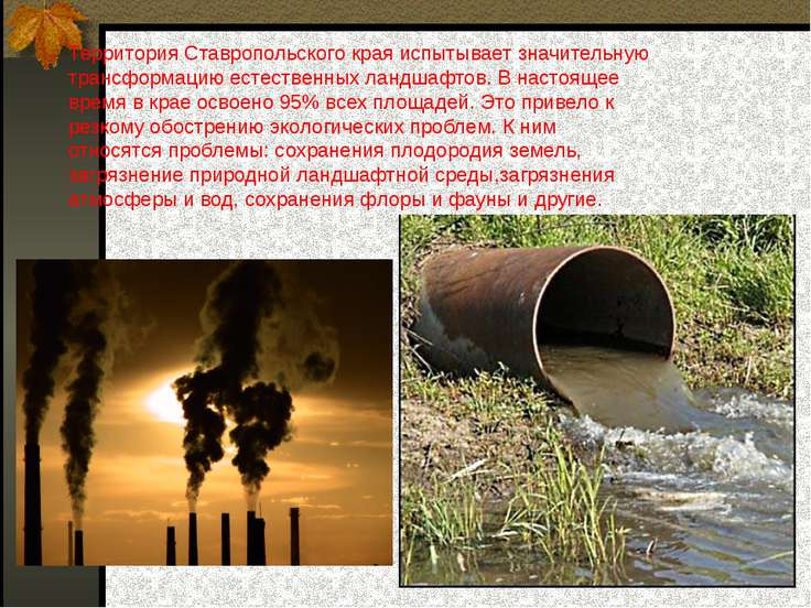 Территория Ставропольского края испытывает значительную трансформацию естеств...