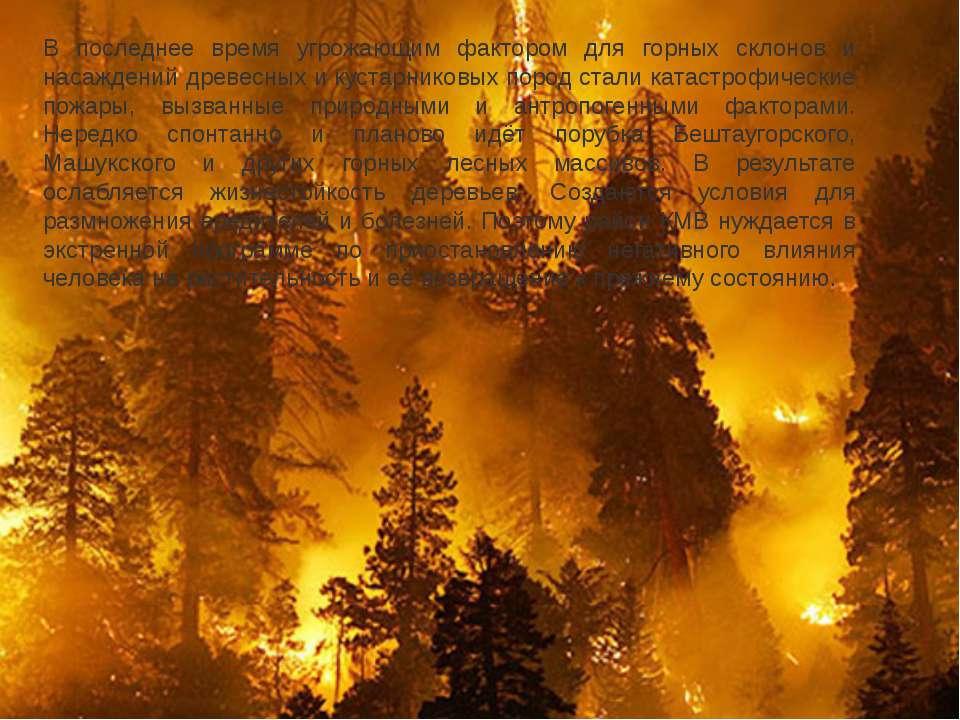 В последнее время угрожающим фактором для горных склонов и насаждений древесн...