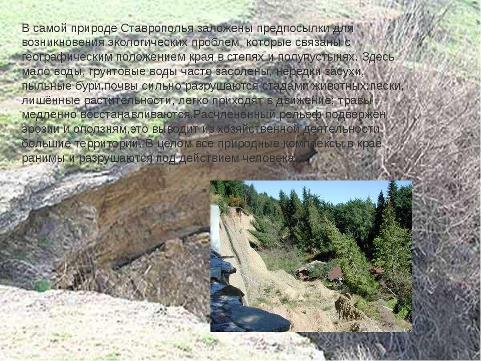 В самой природе Ставрополья заложены предпосылки для возникновения экологичес...