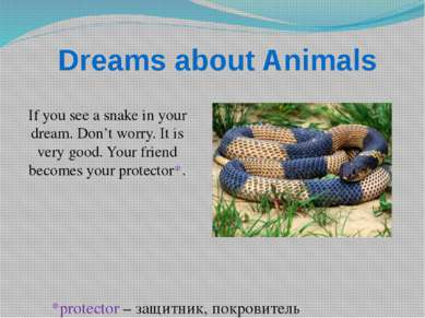 Dreams about Animals If you see a snake in your dream. Don't worry. It is ver...