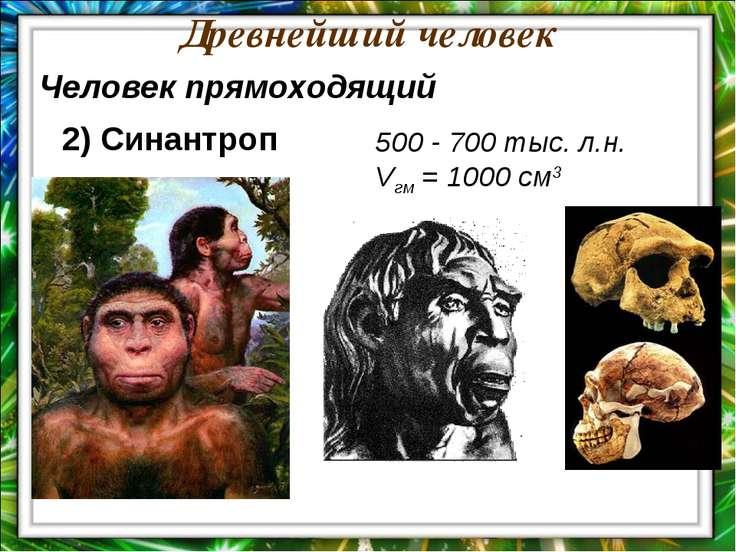 Древнейший человек 500 - 700 тыс. л.н. Vгм = 1000 см3 Человек прямоходящий 2)...