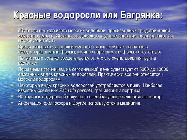 Красные водоросли или Багрянка: обитатели прежде всего морских водоёмов, прес...