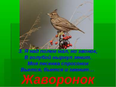 3. Я над полем мал, но звонок, В голубой нырнул зенит. Моя песенка спросонок ...