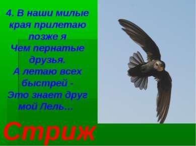 4. В наши милые края прилетаю позже я Чем пернатые друзья. А летаю всех быстр...