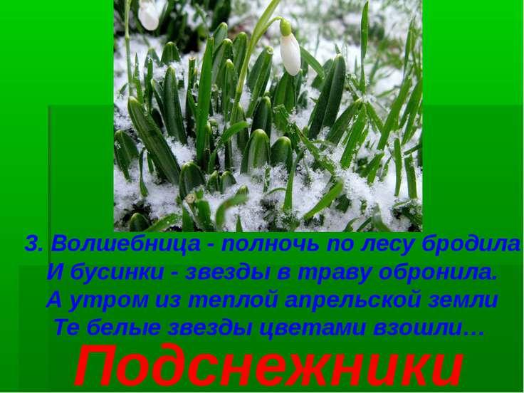3. Волшебница - полночь по лесу бродила И бусинки - звезды в траву обронила. ...
