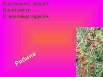 Рябина Под ярусом, ярусом Висят кисти С красным гарусом