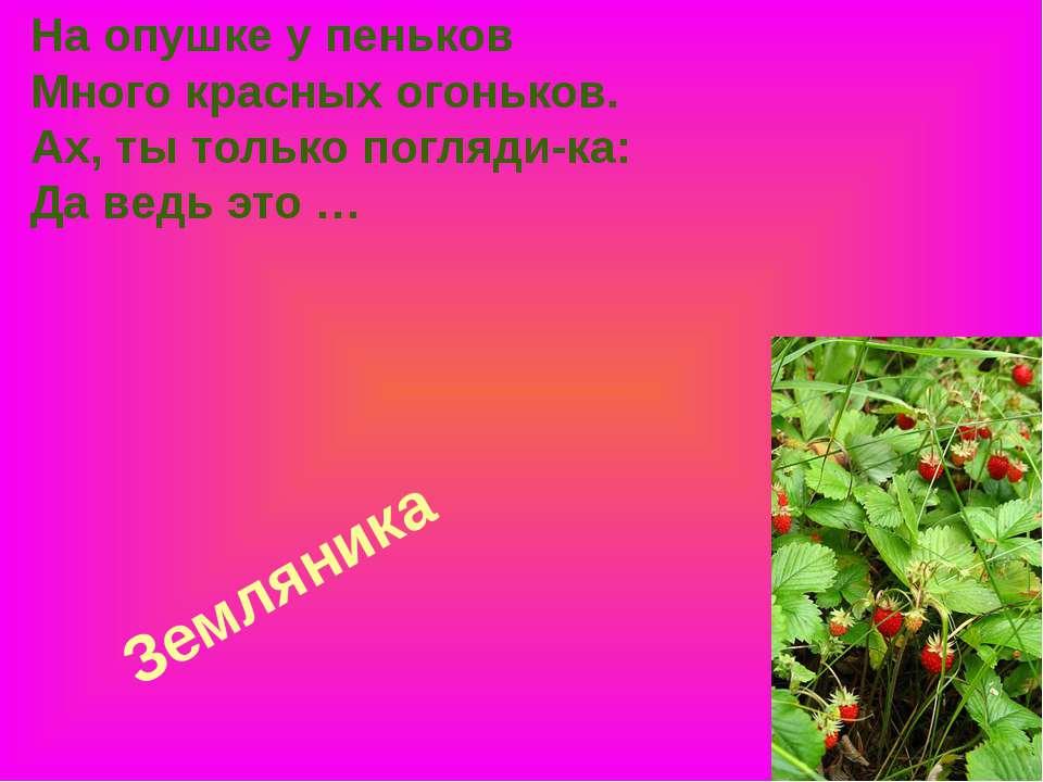 Земляника На опушке у пеньков Много красных огоньков. Ах, ты только погляди-к...