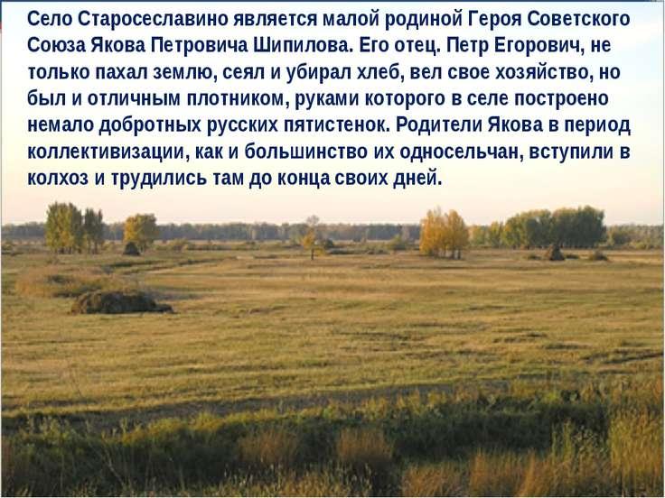 Село Старосеславино является малой родиной Героя Советского Союза Якова Петро...