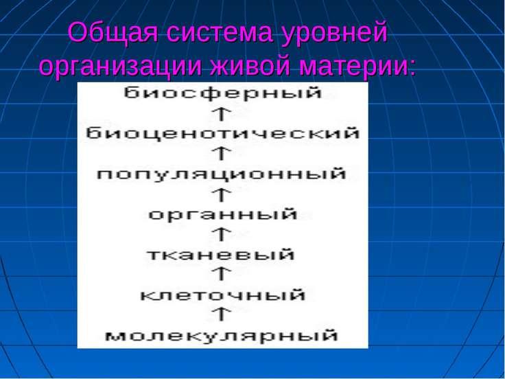 Общая система уровней организации живой материи: