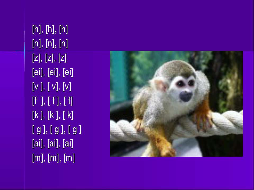 [h], [h], [h] [n], [n], [n] [z], [z], [z] [ei], [ei], [ei] [v ], [ v], [v] [f...