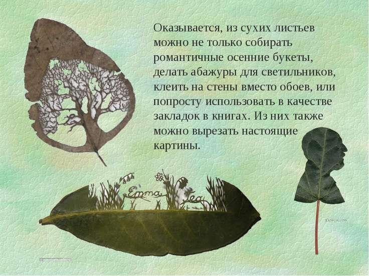 Оказывается, из сухих листьев можно не только собирать романтичные осенние бу...