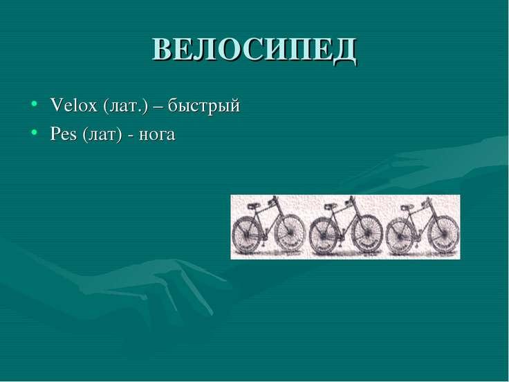 ВЕЛОСИПЕД Velox (лат.) – быстрый Pes (лат) - нога