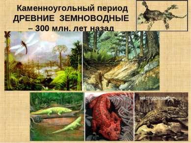 Каменноугольный период ДРЕВНИЕ ЗЕМНОВОДНЫЕ – 300 млн. лет назад мастодонзавр