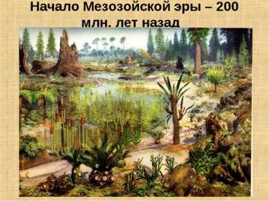 Начало Мезозойской эры – 200 млн. лет назад