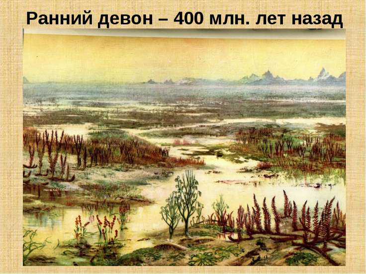 Ранний девон – 400 млн. лет назад
