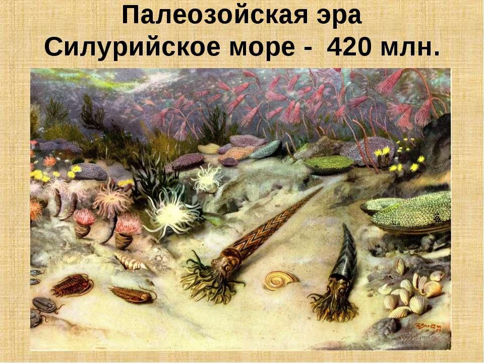 Палеозойская эра Силурийское море - 420 млн. лет назад