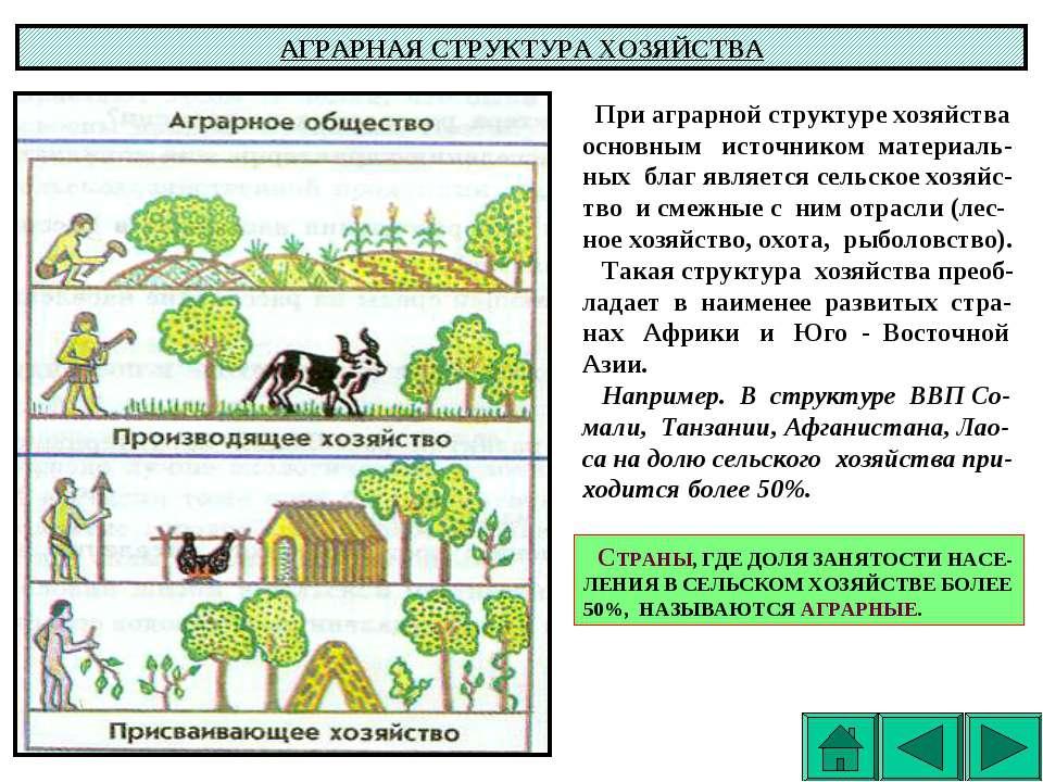 АГРАРНАЯ СТРУКТУРА ХОЗЯЙСТВА При аграрной структуре хозяйства основным источн...