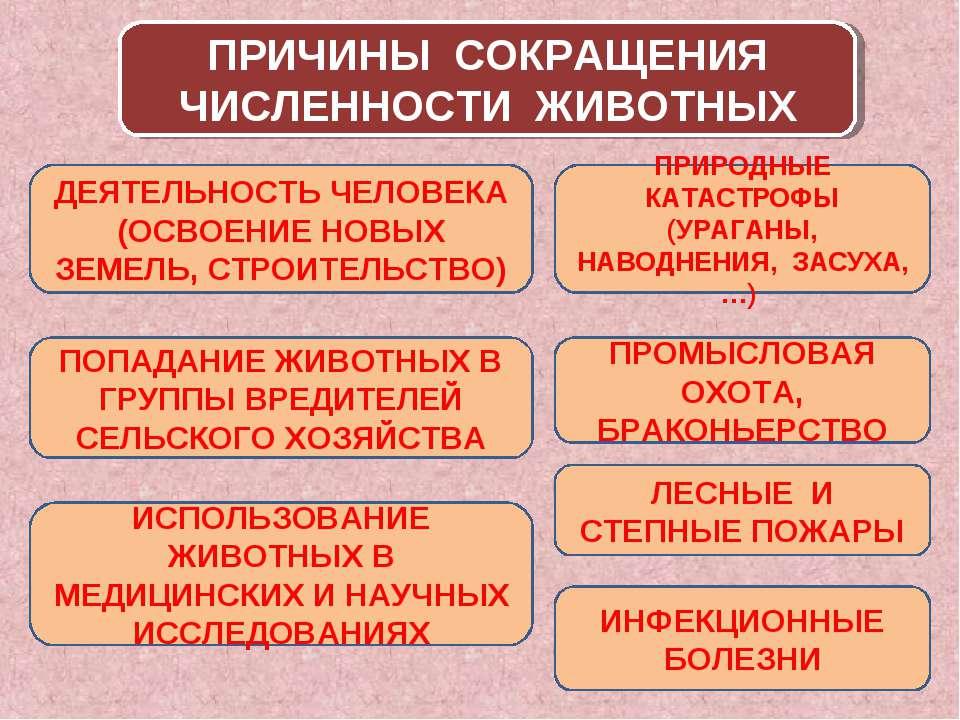 ПРИЧИНЫ СОКРАЩЕНИЯ ЧИСЛЕННОСТИ ЖИВОТНЫХ ДЕЯТЕЛЬНОСТЬ ЧЕЛОВЕКА (ОСВОЕНИЕ НОВЫХ...