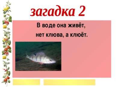 В воде она живёт, нет клюва, а клюёт.