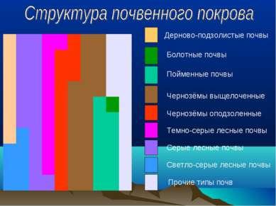 Дерново-подзолистые почвы Светло-серые лесные почвы Серые лесные почвы Темно-...