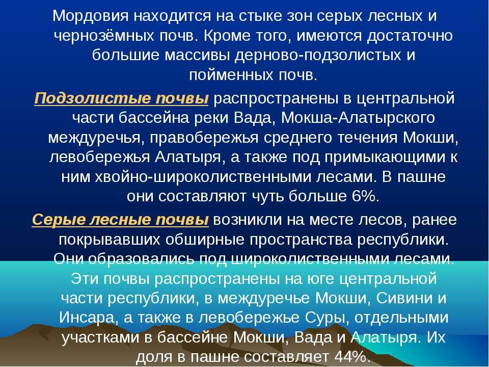 Мордовия находится на стыке зон серых лесных и чернозёмных почв. Кроме того, ...