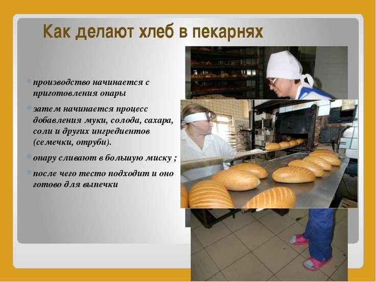 Как делают хлеб в пекарнях производство начинается с приготовления опары зате...