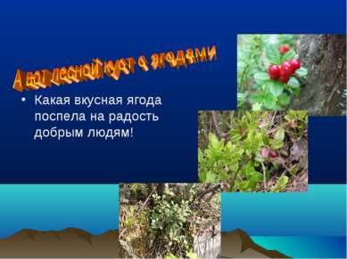 Какая вкусная ягода поспела на радость добрым людям!