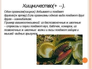 Хищничество(+ --). Один организм(хищник) добывает и поедает другого(жертву).Е...