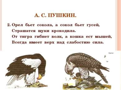 А. С. ПУШКИН. 2. Орел бьет сокола, а сокол бьет гусей, Страшатся щуки крокоди...