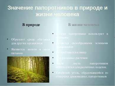 Значение папоротников в природе и жизни человека В природе Образуют среду оби...