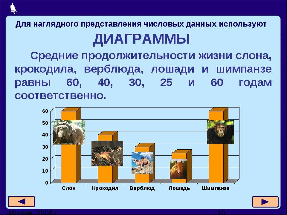 ДИАГРАММЫ Средние продолжительности жизни слона, крокодила, верблюда, лошади ...