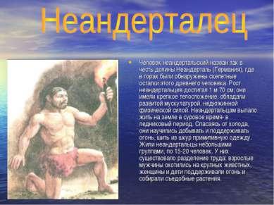Человек неандертальский назван так в честь долины Неандерталь (Германия), где...